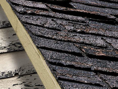 Magee Roofing Company Images